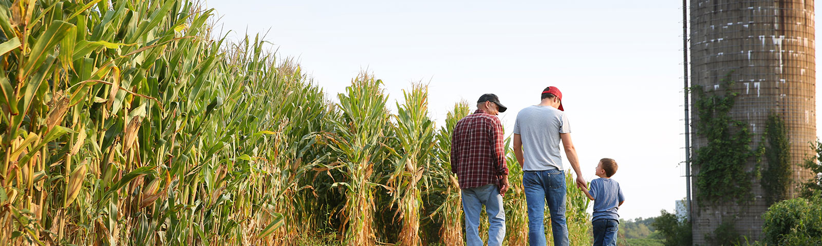 Family near corn field.